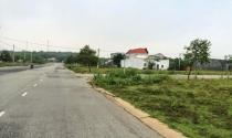 Phê duyệt kế hoạch sử dụng đất 2019 của 2 huyện trên địa bàn Hà Nội