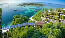 Dự án Flamingo Cát Bà: Chưa ký hợp đồng, Hải Phòng đã vội giao gần 7.000m2 đất cho doanh nghiệp