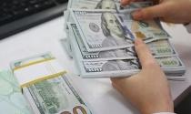 Nhà đầu tư nước ngoài được đặt cọc, ký quỹ bằng ngoại tệ khi tham gia đấu thầu