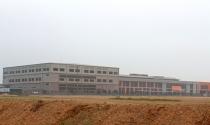 Xảy ra vi phạm xây dựng quy mô lớn tại Phú Thọ