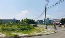 Đà Nẵng thu hồi gần 40 tỉ đồng từ vụ lừa đảo bán đất dự án