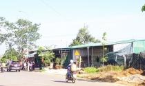 Quản lý lỏng lẻo để dân chiếm đất tràn lan ở Bảo Lộc