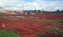 Gia Lai lại tái diễn tình trạng san lấp đất ruộng để bán nền