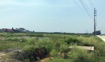 Quảng Nam: Trục lợi, bỏ hoang phí đất công