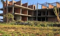 Quảng Ngãi: Chính quyền giằng co với doanh nghiệp, đất vàng ở đảo du lịch bị bỏ hoang