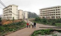 Hà Nội sắp có hơn 1.000 căn nhà ở xã hội giá 8 triệu đồng/m2 tại Mê Linh