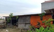 """Yên Phong, Bắc Ninh: Rắc rối vì """"thương vụ"""" mua đất ven đê của Hợp tác xã"""