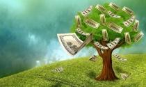 Top 9 ngân hàng đã báo lãi nghìn tỷ
