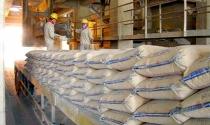 Xuất khẩu xi măng tăng mạnh về giá trị
