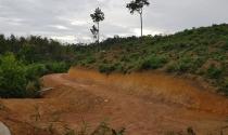 TP. Đà Lạt: Ngang nhiên rao bán đất rừng