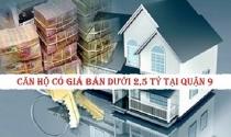 Điểm danh căn hộ có giá bán dưới 2,5 tỷ tại Quận 9