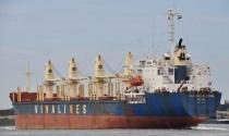 Vinalines xin chuyển nhà máy tàu biển ở Vũng Tàu thành cảng và trung tâm logistics