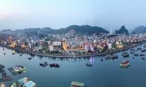 TMS Group muốn đầu tư loạt dự án tại Cẩm Phả, Hạ Long, Uông Bí