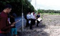 Tràn lan dự án bánh vẽ khu vực phía Nam