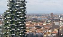 Tạo dựng nhà ở không đúng cách chính là phá vỡ môi trường sống