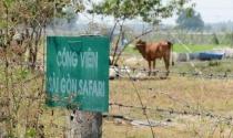 TP Hồ Chí Minh: Phê bình 3 lãnh đạo chậm thực hiện kết luận thanh tra dự án Sài Gòn Safari