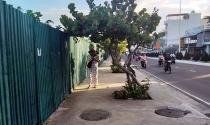 """Khánh Hòa: Dự án lấn biển bỏ hoang """"chây ỳ"""" bàn giao sau quyết định thu hồi"""