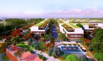 Hướng giải quyết nhu cầu nhà ở cho các chuyên gia tại sân bay Long Thành
