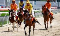 Tập đoàn Charmvit được trao chứng nhận đầu tư trường đua ngựa trị giá hàng trăm triệu đô