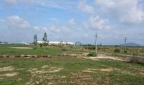 Bất động sản 24h: Dân bức xúc vì bị lừa cho thuê đất