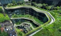 Công trình xanh giúp giải quyết ô nhiễm môi trường