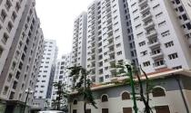 Chủ đầu tư vi phạm nghiêm trọng trong quản lý chung cư không được phát triển dự án mới