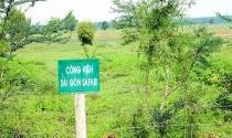 Sai phạm tại dự án Sài Gòn Safari: Chính thức kiểm điểm 8 đơn vị liên quan