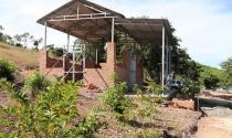 Chiếm hàng chục ha đất công làm vườn sinh thái