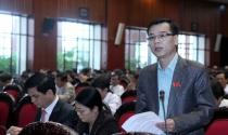 Luật Thuế thu nhập cá nhân (sửa đổi): Nên áp dụng từ 1.1.2013