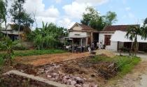 Có được trồng cây trên ranh giới đất chung giữa 2 nhà?