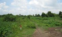 Đất khai hoang có được cấp giấy chứng nhận quyền sử dụng đất?