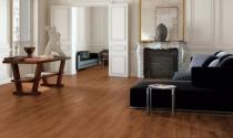 Bí quyết lắp đặt sàn gỗ tránh mối mọt xâm nhập