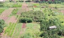 Không đồng ý phương án bồi thường đất bị thu hồi, có được khiếu kiện?