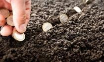 Quy định về nộp tiền sử dụng đất