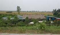 Có được xây nhà tạm trên đất nông nghiệp?
