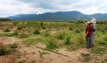 Tư vấn chuyển đổi mục đích sử dụng đất