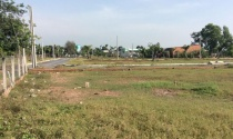 Chuyển đổi mục đích sử dụng đất trồng cây lâu năm sang đất ở