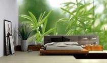 Chọn giường ngủ theo thuyết Ngũ hành
