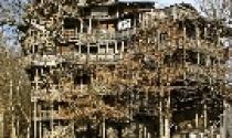 Chiêm ngưỡng biệt thự gỗ có một không hai
