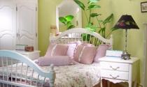 Có nên trồng cây cảnh trong phòng ngủ?