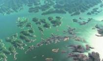 Hồ nghìn đảo như tiên cảnh ở Trung Quốc