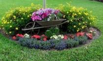 10 ý tưởng trang trí sân vườn từ xe cút kít