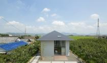 """Độc đáo ngôi nhà """"không sàn"""" giữa vườn hồng tại Nhật Bản"""