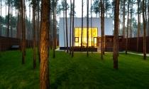 Nhà hình khối sâu hút giữa rừng thông