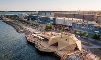 """Phát hiện """"rùa gỗ khổng lồ"""" trên bờ biển Helsink"""