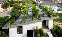 """Biến mái nhà thành """"công viên"""", ngôi nhà xanh ở Nha Trang được báo Tây ca ngợi"""
