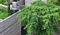 Độc lạ kiến trúc chia sẻ nhà với cây xanh của KTS Võ Trọng Nghĩa