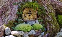 Sáng tạo với thiết kế vườn cổ tích tuyệt đẹp