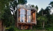 Mãn nhãn trước kiến trúc căn hộ 4 trụ sọc giữa rừng xanh Nam Phi