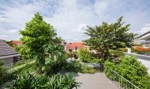 Biệt thự Sài Gòn có cây đua nhau mọc xuyên tầng